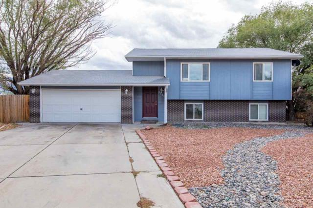 3287 Shadow Ridge Court, Clifton, CO 81520 (MLS #20185647) :: The Grand Junction Group