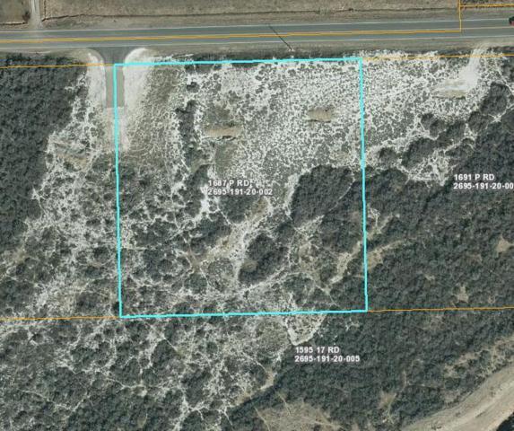 1697 P Road, Loma, CO 81524 (MLS #20185715) :: The Borman Group at eXp Realty