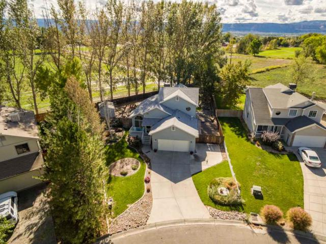 727 Corral Drive, Grand Junction, CO 81505 (MLS #20185743) :: The Borman Group at eXp Realty