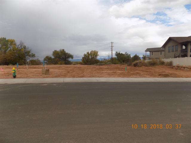 716 Roundup Drive, Grand Junction, CO 81507 (MLS #20185745) :: The Christi Reece Group