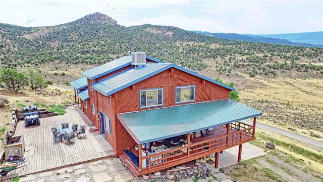 50249 Ke Road, Mesa, CO 81643 (MLS #20185763) :: The Christi Reece Group