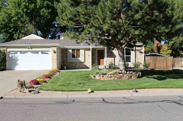 585 31 Road, Grand Junction, CO 81504 (MLS #20185775) :: The Borman Group at eXp Realty
