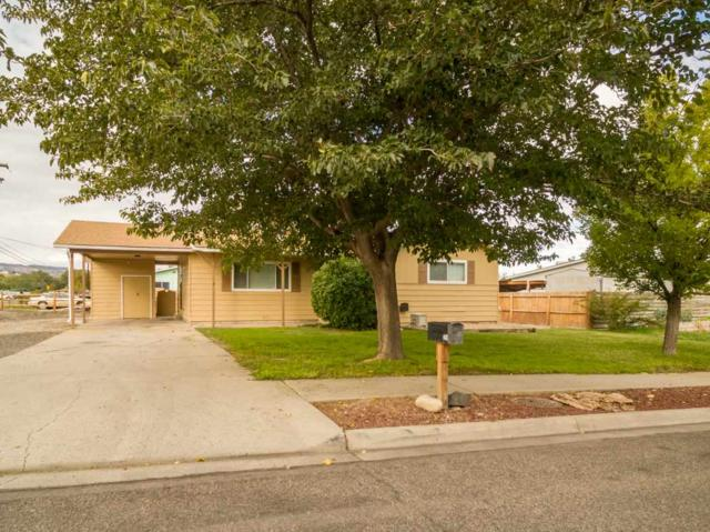 251 W Parkview Drive, Grand Junction, CO 81503 (MLS #20185807) :: The Borman Group at eXp Realty