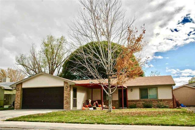 458 Carson Lake Drive, Clifton, CO 81520 (MLS #20185839) :: The Grand Junction Group