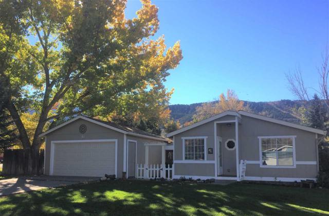 181 E Tamarack Circle, Parachute, CO 81635 (MLS #20185886) :: Keller Williams CO West / Mountain Coast Group