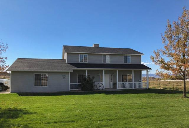 1695 White Falcon Court, Loma, CO 81524 (MLS #20185888) :: CapRock Real Estate, LLC