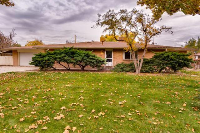335 Walnut Avenue, Grand Junction, CO 81501 (MLS #20186042) :: The Christi Reece Group