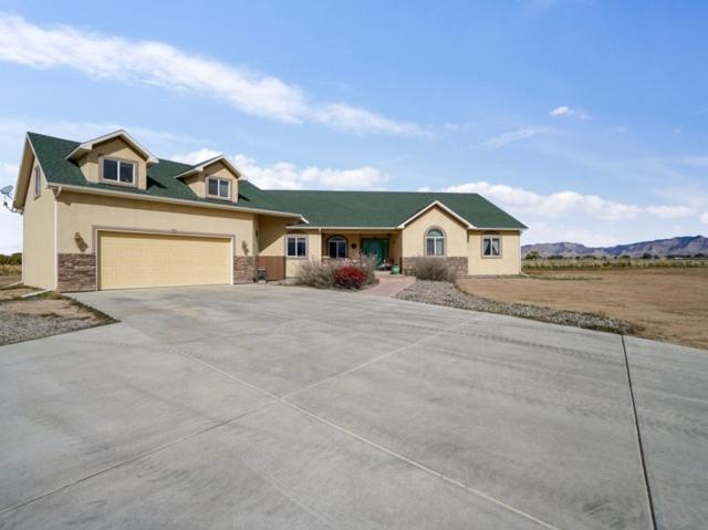 1920 M Road, Fruita, CO 81521 (MLS #20186065) :: The Grand Junction Group