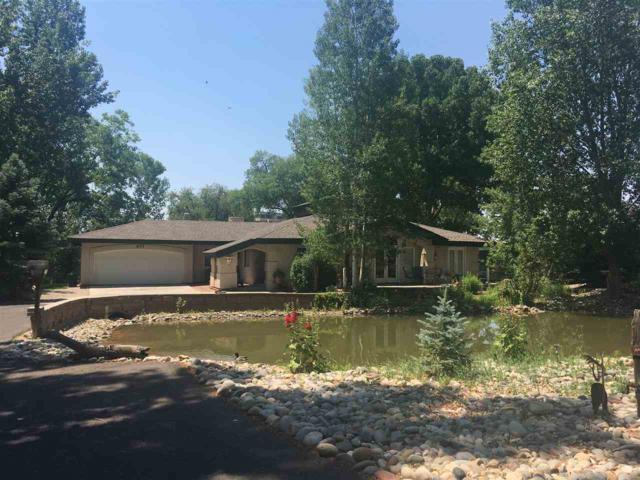 655 Deer View Lane, Grand Junction, CO 81506 (MLS #20186108) :: CapRock Real Estate, LLC