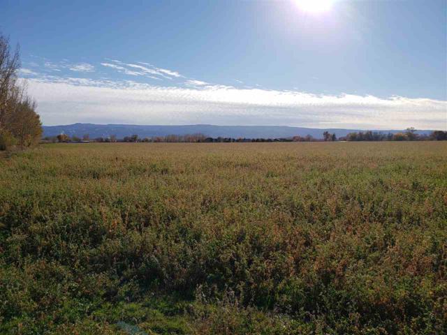 1471 18 Road, Fruita, CO 81521 (MLS #20186156) :: CapRock Real Estate, LLC