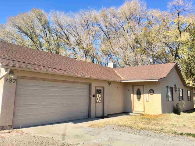 737 25 Road, Grand Junction, CO 81505 (MLS #20186179) :: CapRock Real Estate, LLC