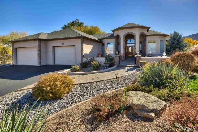 687 Curecanti Circle, Grand Junction, CO 81507 (MLS #20186215) :: The Christi Reece Group