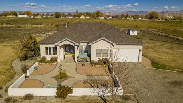 1336 M 1/2 Road, Grand Junction, CO 81524 (MLS #20186218) :: Keller Williams CO West / Mountain Coast Group