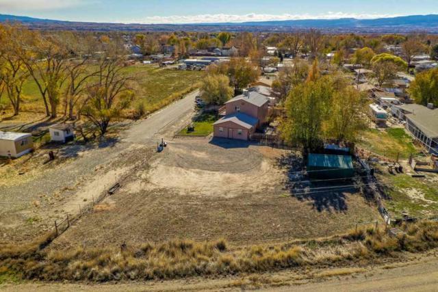 659 Ronald Drive, Grand Junction, CO 81504 (MLS #20186221) :: CapRock Real Estate, LLC