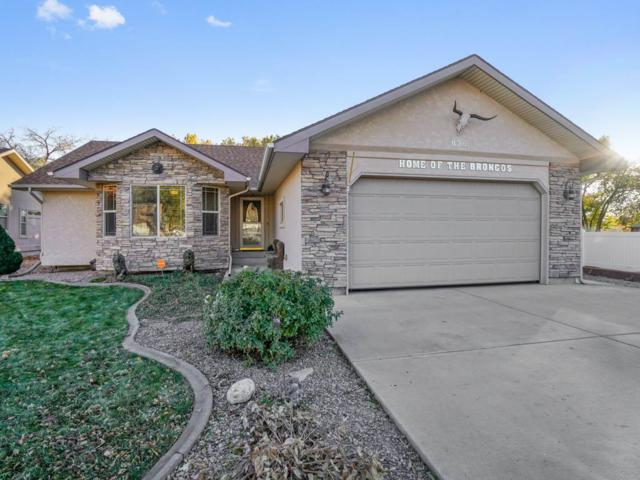 836 Lincoln Court, Palisade, CO 81520 (MLS #20186251) :: The Grand Junction Group