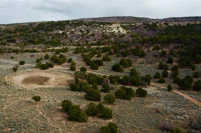 Lot 26 Red Creek Ranch, Glade Park, CO 81523 (MLS #20186255) :: The Christi Reece Group
