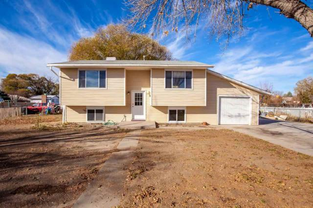573 29 1/2 Road, Grand Junction, CO 81504 (MLS #20186309) :: The Christi Reece Group