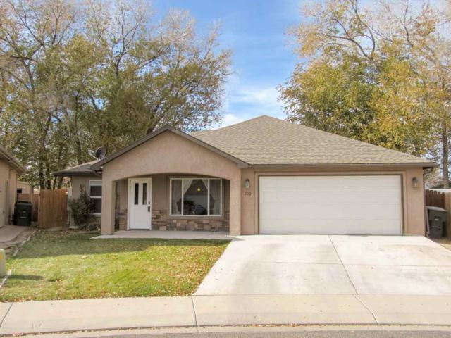 303 Carriage Hills Court, Grand Junction, CO 81503 (MLS #20186333) :: The Christi Reece Group