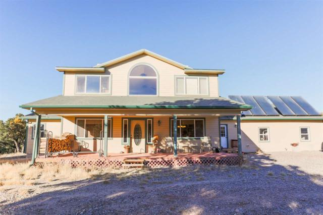 19771 Miller Canyon Ranch Road, Glade Park, CO 81523 (MLS #20186403) :: The Christi Reece Group