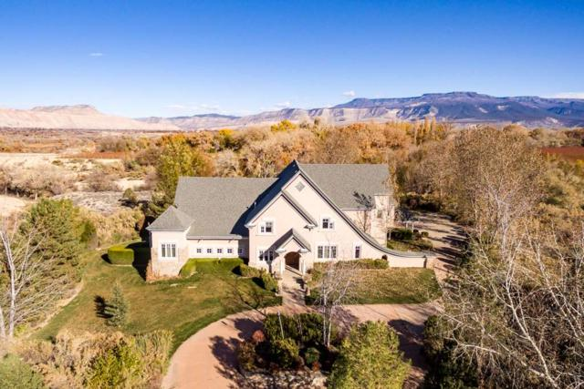 369 Vino Tinto Lane, Palisade, CO 81526 (MLS #20186443) :: The Grand Junction Group