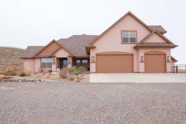 6110 La Golondrina Court, Whitewater, CO 81527 (MLS #20186477) :: The Grand Junction Group