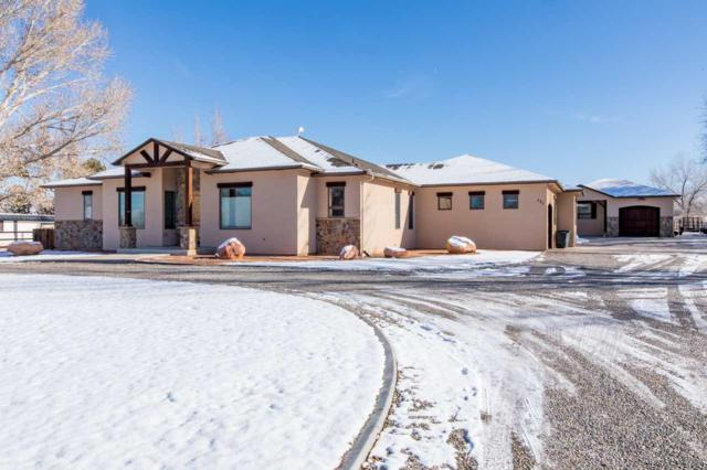 584 22 1/2 Road, Grand Junction, CO 81507 (MLS #20186499) :: Keller Williams CO West / Mountain Coast Group