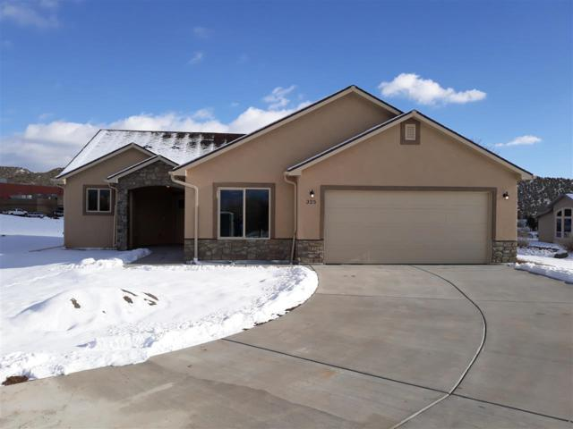 325 SE Cobblestone Court, Cedaredge, CO 81413 (MLS #20186520) :: The Grand Junction Group