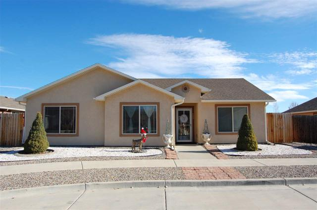 558 Acacia Avenue, Grand Junction, CO 81504 (MLS #20186576) :: CapRock Real Estate, LLC