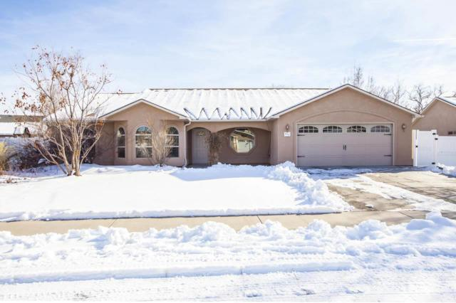 802 Darcy Jo Lane, Fruita, CO 81521 (MLS #20190092) :: The Grand Junction Group