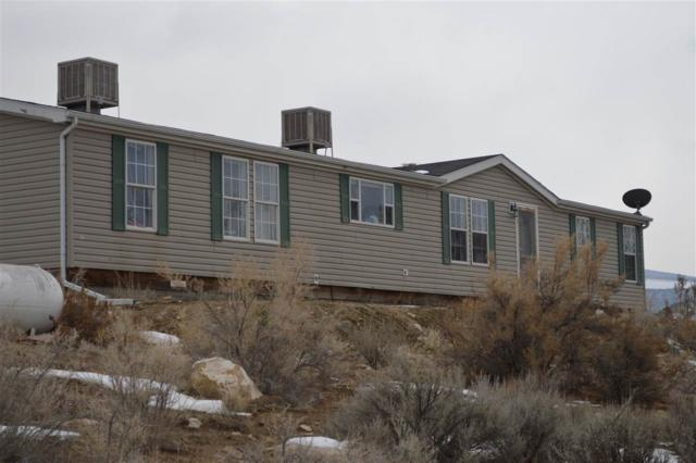 564 39 Road, Palisade, CO 81526 (MLS #20190146) :: The Christi Reece Group