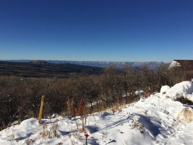413 E Coyote Run, Mesa, CO 81643 (MLS #20190155) :: The Christi Reece Group