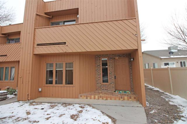 575 28 1/2 Road #48, Grand Junction, CO 81501 (MLS #20190194) :: The Christi Reece Group