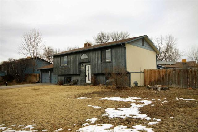 3060 Hill Avenue, Grand Junction, CO 81504 (MLS #20190198) :: The Christi Reece Group