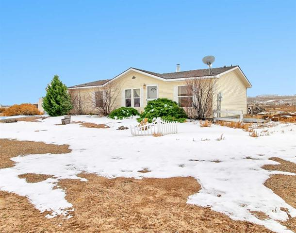 8225 Bean Ranch Road, Whitewater, CO 81527 (MLS #20190261) :: The Grand Junction Group