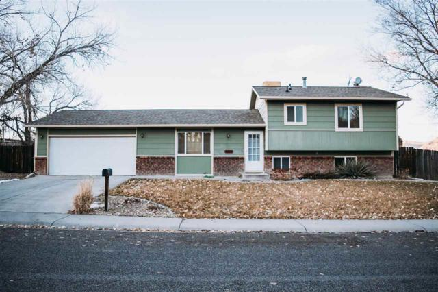 2890 Darla Drive, Grand Junction, CO 81506 (MLS #20190280) :: CapRock Real Estate, LLC