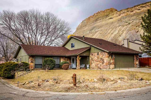 144 Davis Circle, Palisade, CO 81526 (MLS #20190547) :: The Grand Junction Group