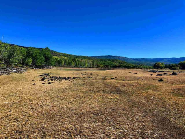 25622 Horse Creek Road, Cedaredge, CO 81413 (MLS #20190580) :: The Grand Junction Group