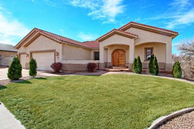 727 Beaver Lodge Lane, Grand Junction, CO 81505 (MLS #20190616) :: CapRock Real Estate, LLC