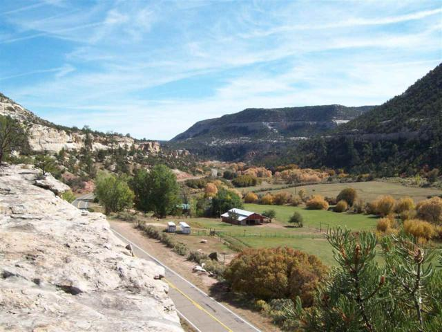 3171 Highway 90, Paradox, CO 81429 (MLS #20190620) :: The Grand Junction Group