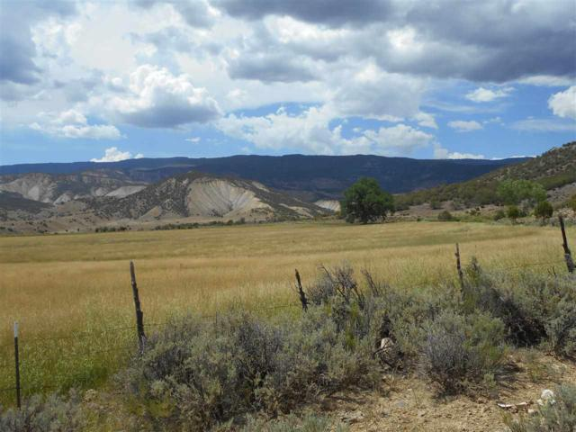 18069 North Road, Eckert, CO 81418 (MLS #20190622) :: The Christi Reece Group