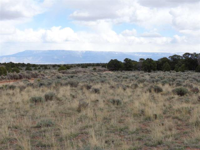 20731 Rim View Drive, Glade Park, CO 81523 (MLS #20190665) :: The Grand Junction Group