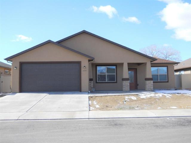 459 Arenosa Street, Grand Junction, CO 81504 (MLS #20190693) :: The Christi Reece Group