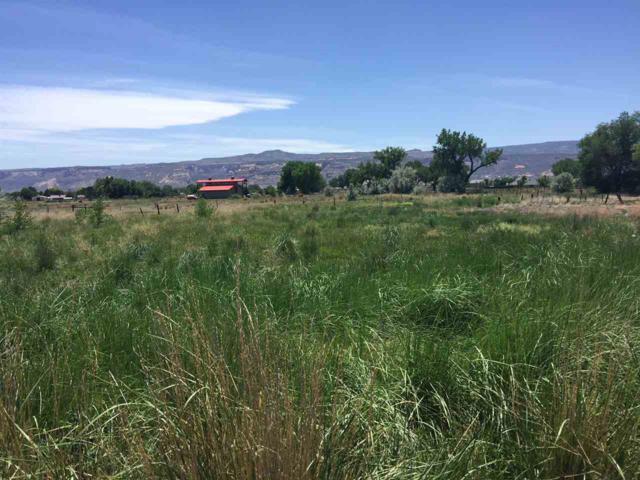 1851 K Road, Fruita, CO 81521 (MLS #20190731) :: The Grand Junction Group
