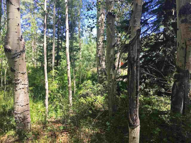 Lot 54 Deer Park, Antonito, CO 81120 (MLS #20190747) :: The Grand Junction Group