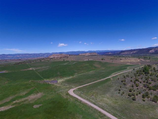 2209 County Road 324, Silt, CO 81652 (MLS #20190799) :: The Christi Reece Group