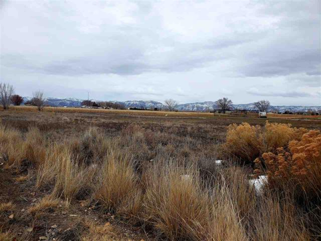 1906 Deer Crossing Drive, Grand Junction, CO 81521 (MLS #20190807) :: The Christi Reece Group