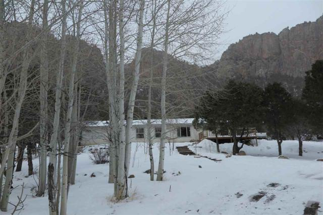 17600 Highway 141, Whitewater, CO 81527 (MLS #20190820) :: The Christi Reece Group