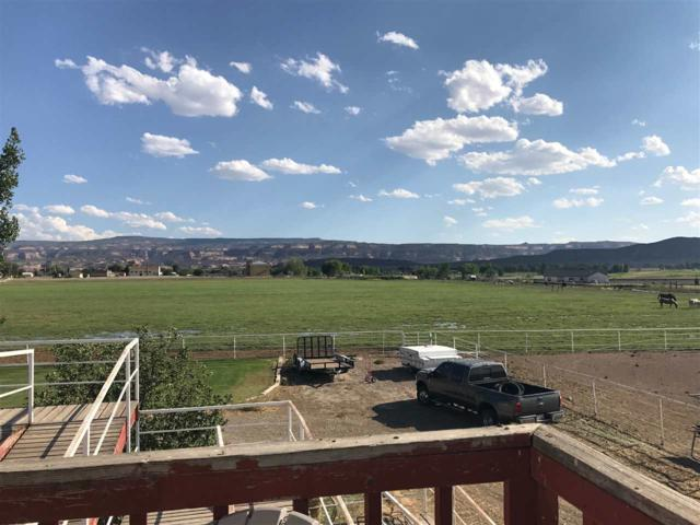TBD 13 Road, Loma, CO 81524 (MLS #20190891) :: The Christi Reece Group