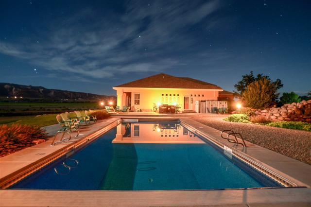 1950 Timber Falls Drive, Fruita, CO 81521 (MLS #20191081) :: CapRock Real Estate, LLC