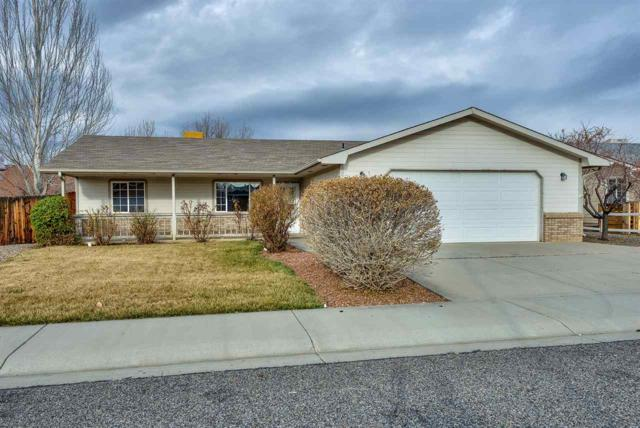 585 Pioneer Road, Grand Junction, CO 81504 (MLS #20191254) :: The Christi Reece Group